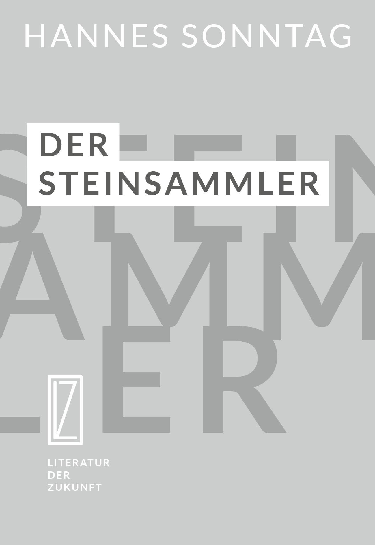 Cover - Der Steinsammler